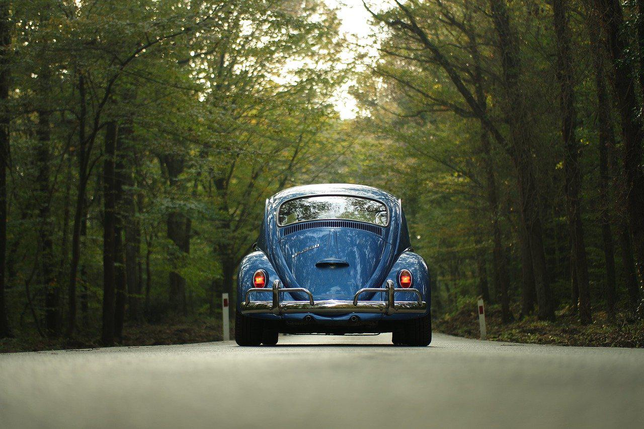 blue VW in the forest