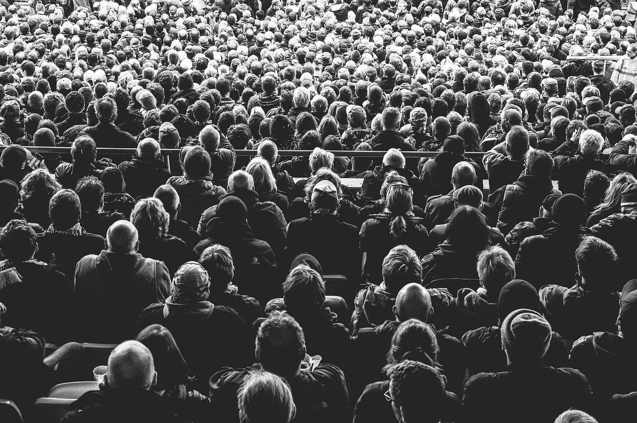 grow your audience business TikTok