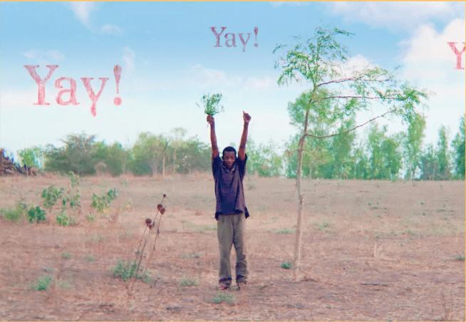 happy man Yamba moringa